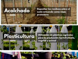 Agricultura y reciclaje: una unión beneficiosa para el medio ambiente