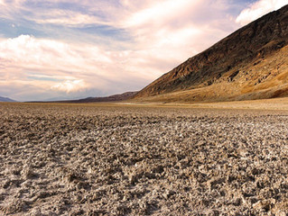 Efectos de la salinidad en los suelos