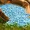 Thumbnail: Recomendaciones de Encalado