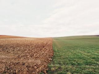 Beneficios del análisis de suelo