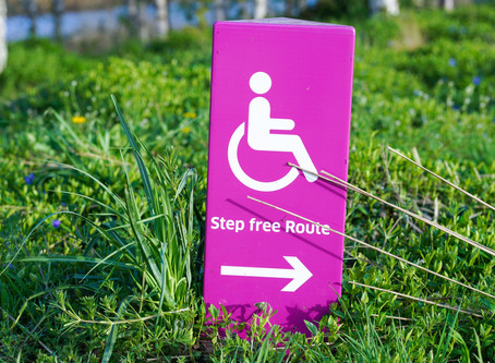 Guidelines to Increase Disability Inclusion In Your Organisation