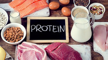 Why is Protein so Important?