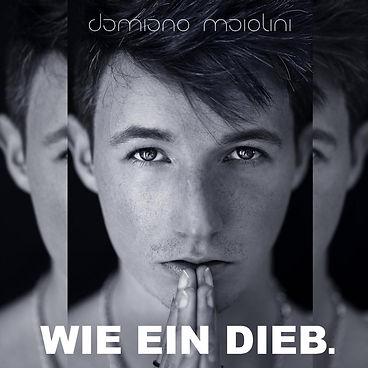 damiano-maiolini-wie-ein-dieb.JPG