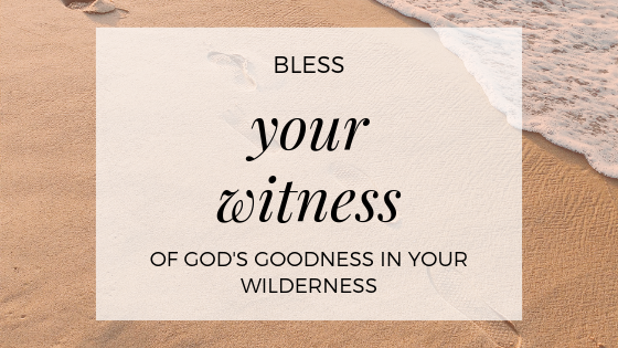 Lent Wilderness