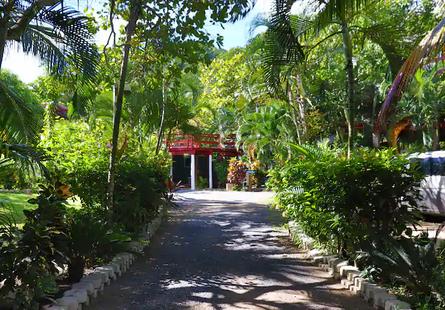 Mayan Garden Rentals