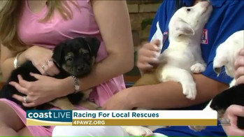 Racing_for_Local_Rescues_on_Coast_Live-U