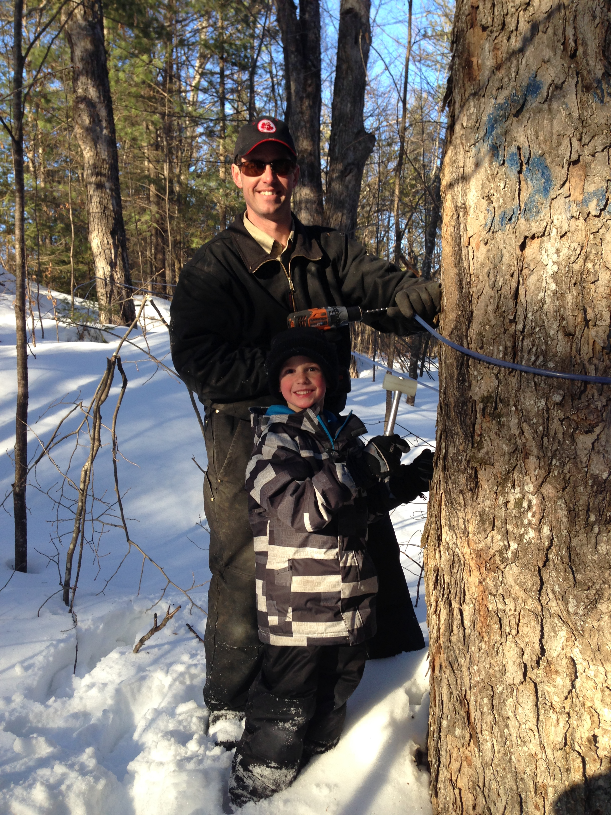 Logan and Scott tapping trees.