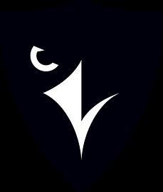 1200px-Carleton_Ravens_logo.svg.png
