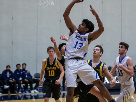 McMath beat MEI in high flying affair