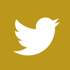 iconmonstr-twitter-2-240