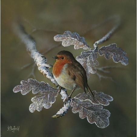 Robin-Tree-1_m.jpg