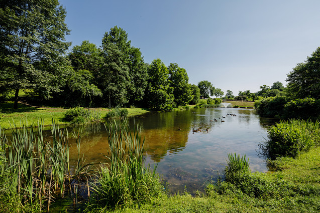StoneCreek Pond