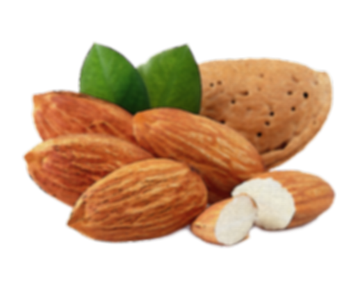 natural, sugar free, vegan, no sugar, healthy, nuts, fruits, healhy snacks, paleo, miachia, energy snack, almond