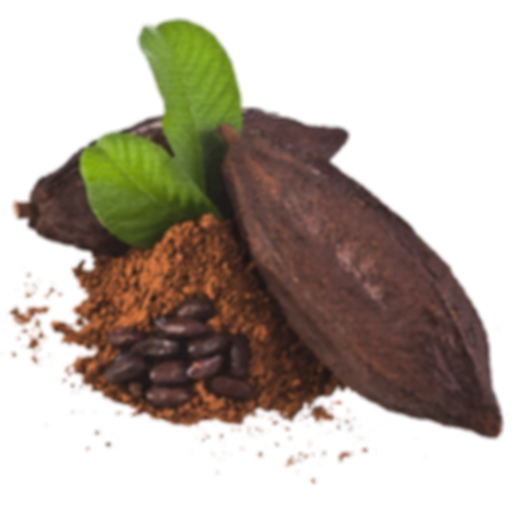 natural, sugar free, vegan, no sugar, healthy, nuts, fruits, healhy snacks, paleo, miachia, energy snack, cacao, chocolate