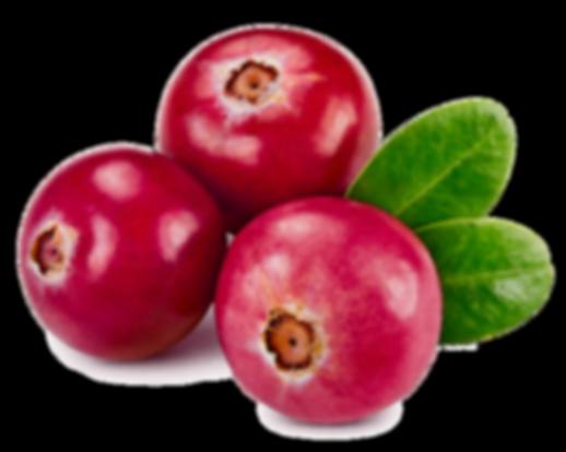 natural, sugar free, vegan, no sugar, healthy, nuts, fruits, healhy snacks, paleo, miachia, energy snack, cranberry
