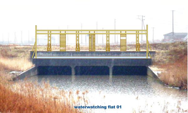 2009水と土新潟2.jpg