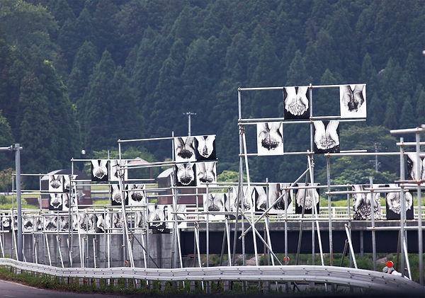 2009水と土新潟4.jpg