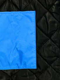 Japona azul (1).JPG