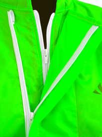 Japona verde (4).jpg