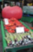 borough mkt giant tomato (2017_09_11 19_