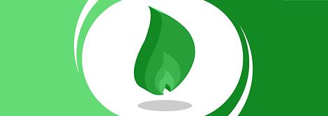 gaz-vert-biogaz-biomethane-energies-reno