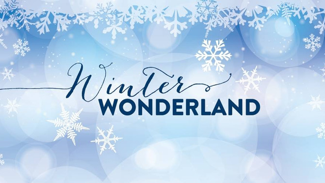 Lakeview presents our Winter Wonderland Charity shopping event!
