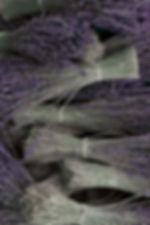 Stress-Fix_ingredient_image.jpg