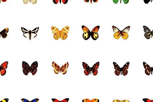 48 x Miniature Butterflies