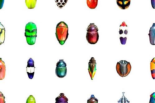 48 x DIY Miniature Bugs