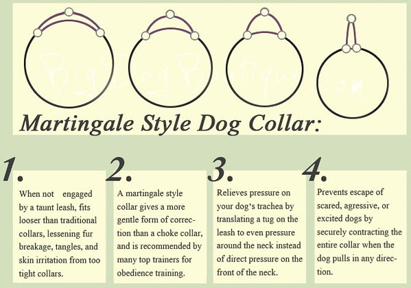 martingale-collar-benefits-dogcollars-cc