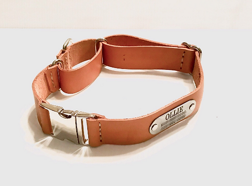 Quick Release Martingale Dog Collar