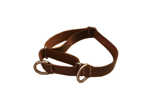 Double D Ring Martingale Dog Collar
