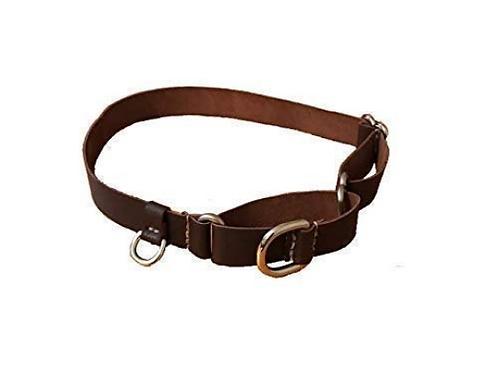 Mini D Ring Martingale Dog Collar