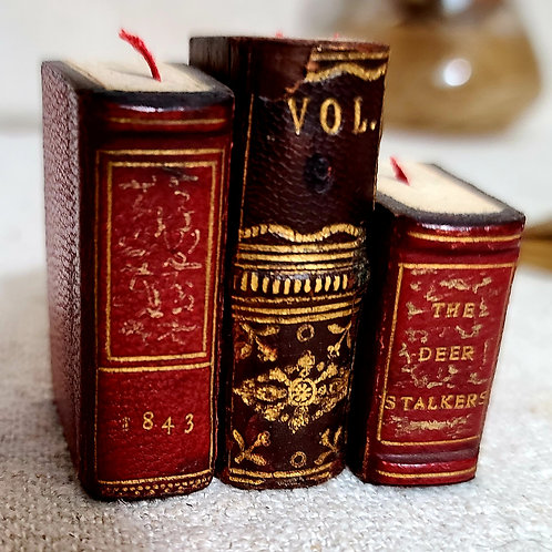 Group of 3 Miniature Doll books