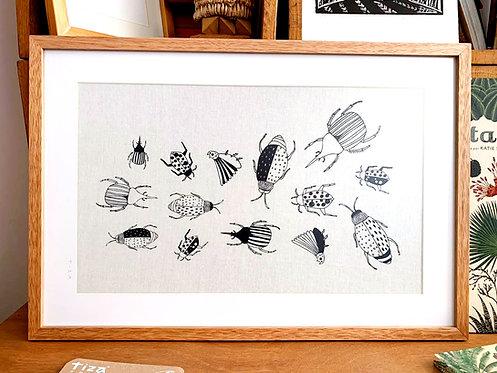 CUADRO Escarabajos