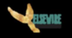 Elsewire Logo For Web - Transparent-01.p