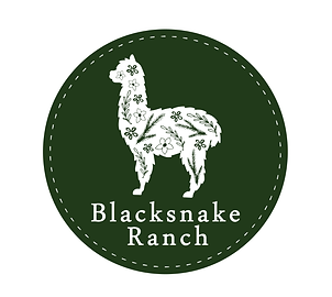 Blacksnake Ranch Final Logo-01- White-01