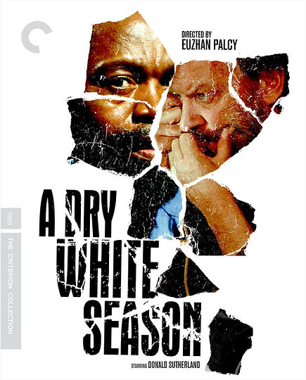 A_DRY_WHITE_SEASON_Poster_criterion_larg