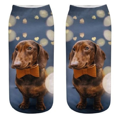 Image of Dachshund Puppy Dog Trainer Socks