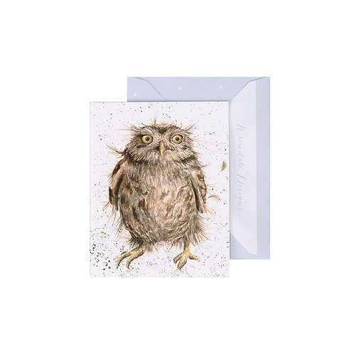 Image of Wrendale Designs 'What a Hoot' Owl Mini Greetings Card