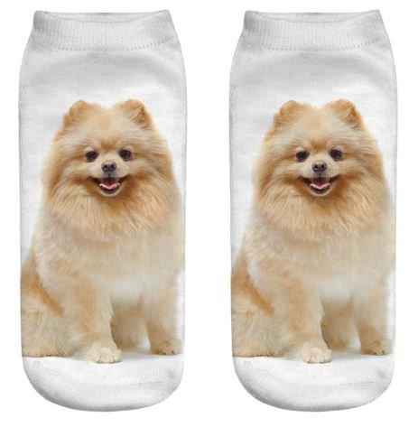 Pomeranian Dog Trainer Socks