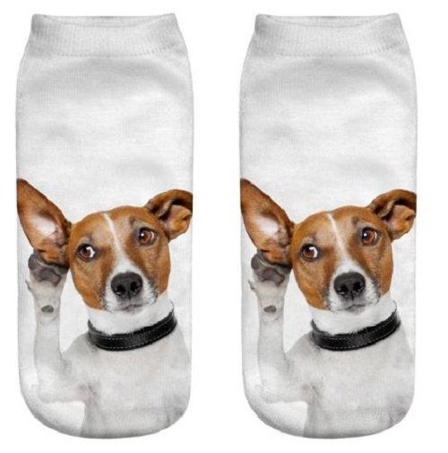 Jack Russell Terrier Dog Trainer Socks