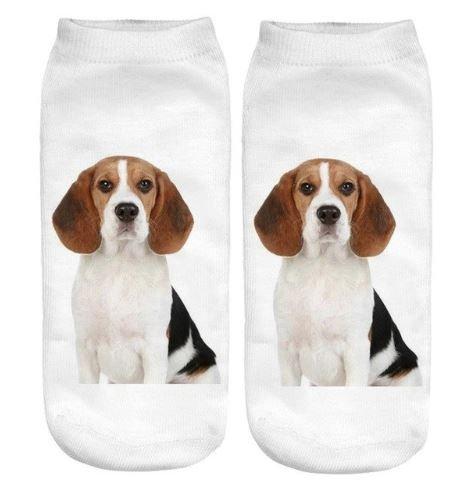 Image of Beagle Puppy Dog Trainer Socks