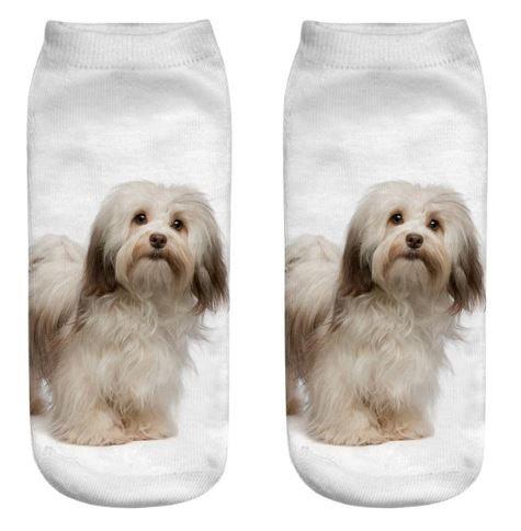 Havanese Dog Trainer Socks