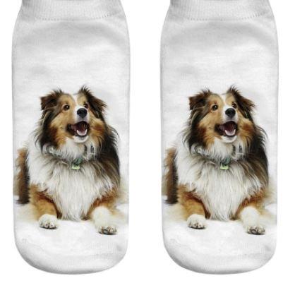 Image of Shetland Sheep Dog Trainer Socks