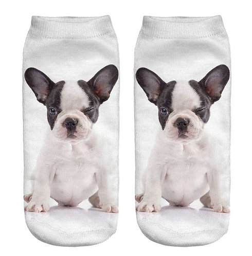 Image of Boston Terrier Dog Trainer Socks