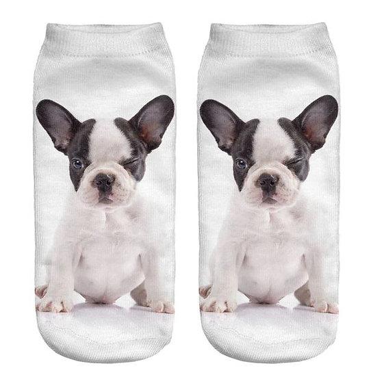 Image of Boston Terrier Dog Socks