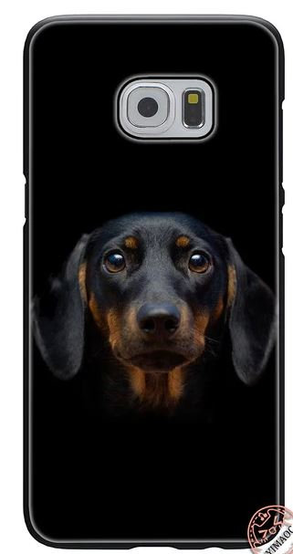 Dachshund Sausage Dog Puppy Print Mobile Phone Case Samsung S6 Edge