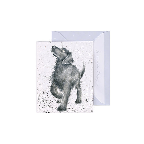 Image of Wrendale Designs 'Walkies' Dog Mini Greetings Card