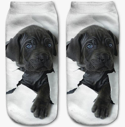 Image of Labrador Retriever Puppy Dog Trainer Socks
